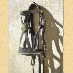 Guard horse hunter bridle