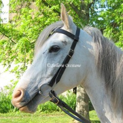 Bridoon for empire bridle (guard or regular)