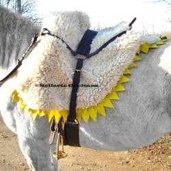 Shabraque  cuirassier cavalerie lourde