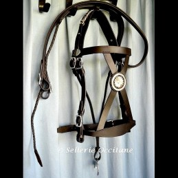 Officer Light cavalry bridle 1st Empire