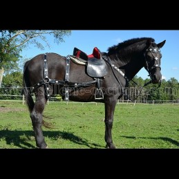 SET MEROVEE bridle, breast collar and large breeching