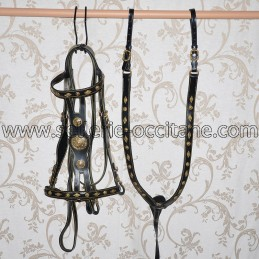 Bridle + breastplate SPARTACUS