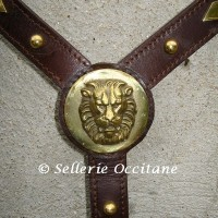 Breastplates & breastcollars